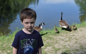 Cade's not too sure about the geese