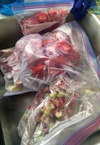 strawberries-and-rhubarb2